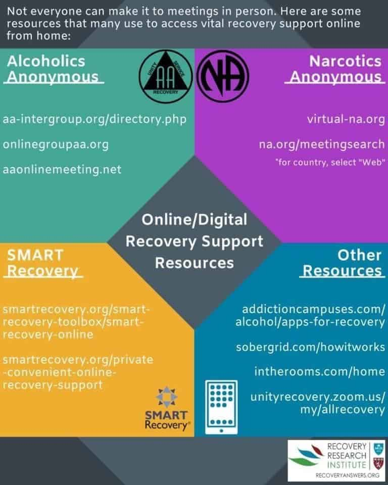 Online digital recovery support resources